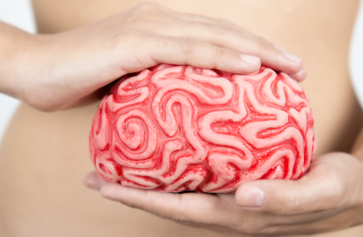 eixo intestino e cérebro